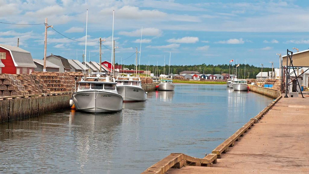 Tignish Boats at the Wharf